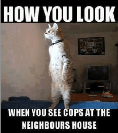 Cops at the neighbors' house