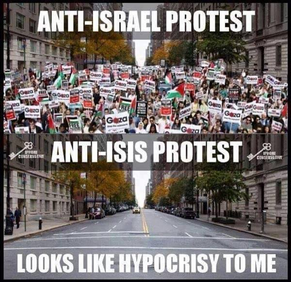 Anti Israel and anti ISIS protests