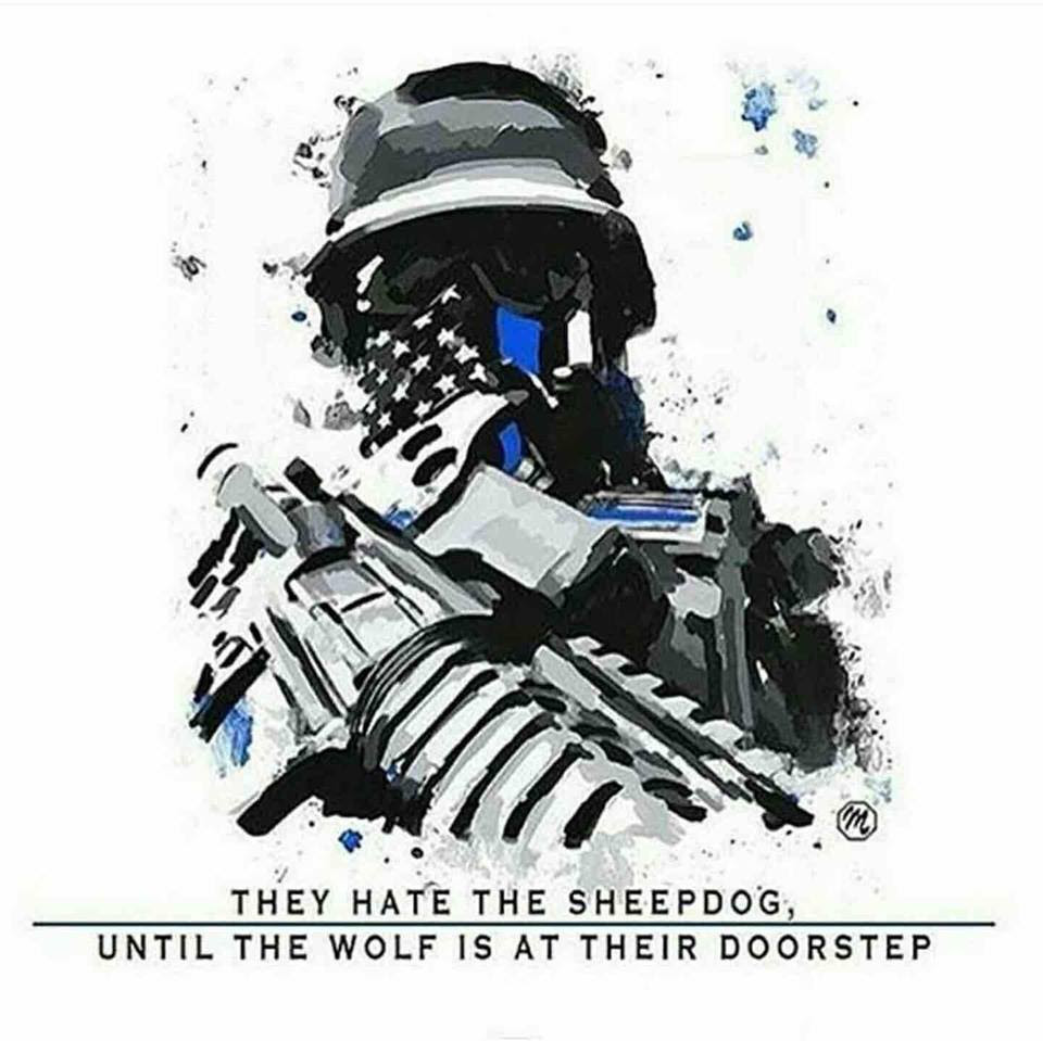 Hate the sheepdog until the wolf shows up