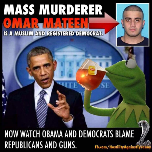 Guns Mateen democrat Muslim Republicans and NRA blamed