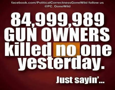 Guns legal gun owners almost never murder
