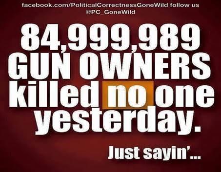 Guns legal gun owners almost never murder