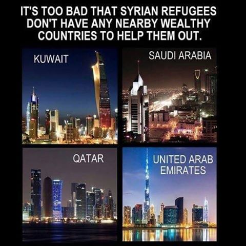 Islam Muslim countries that could take them