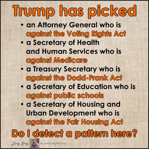 trump-picks