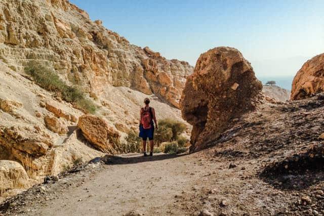 Ein Gedi Nature Reserve, Israel desert