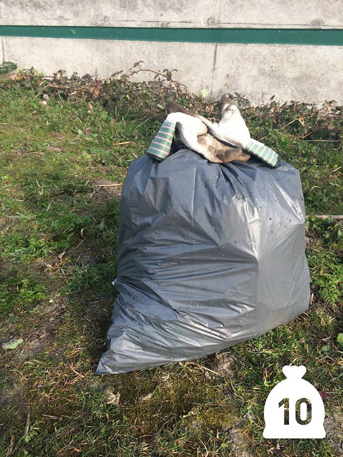 proyecto-recoger-basura-diariamente-pigswegetwhatpigsdeserve-holanda (10)