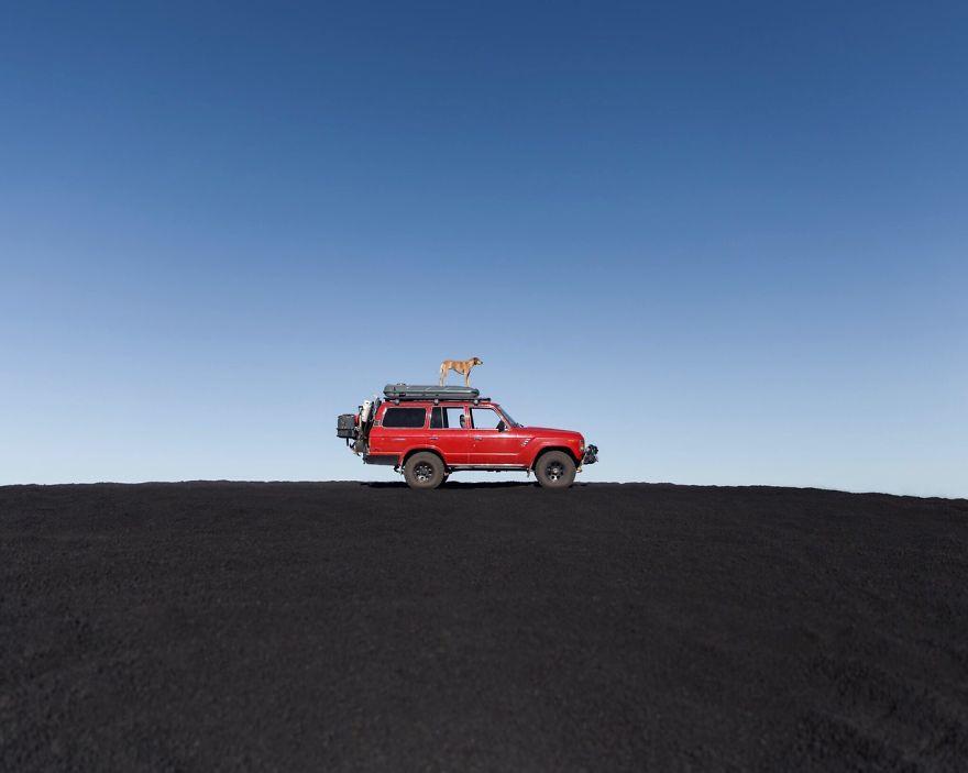 perro-maddie-viajes-moto-theron-humphrey (13)