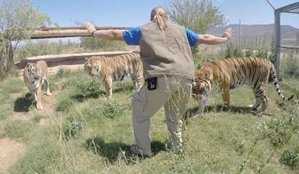 personal-zoos-recreando-escena-jorassic-world (14)