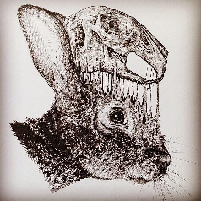 dibujos-esqueletos-animales-paul-jackson (13)