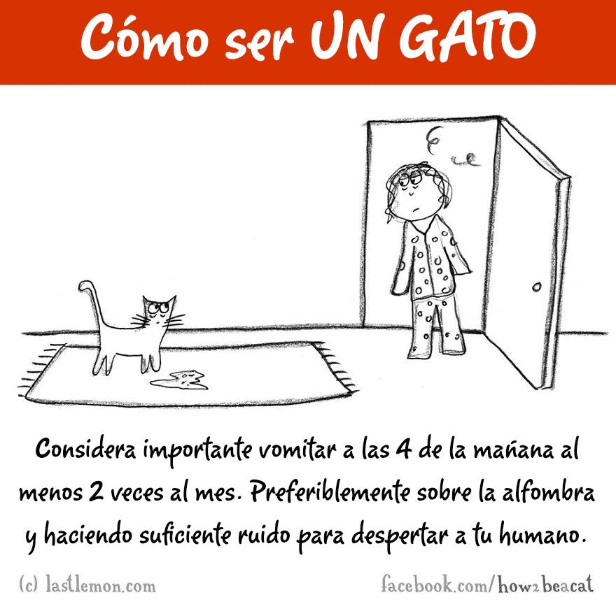 guia-ilustrada-como-ser-un-gato-last-lemon-15