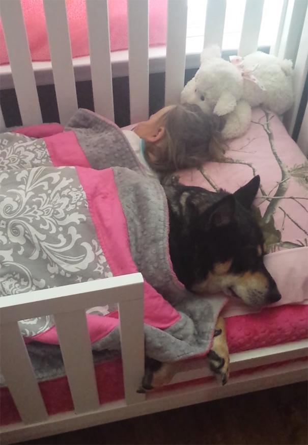 nina-perro-adoptado-durmiendo-juntos-cuna (1)