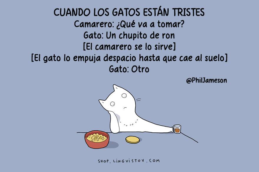 guia-ilustrada-verdades-gatos-12
