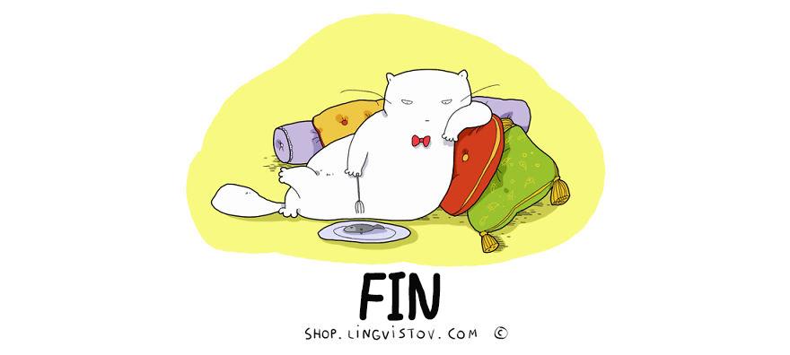 guia-ilustrada-verdades-gatos-16