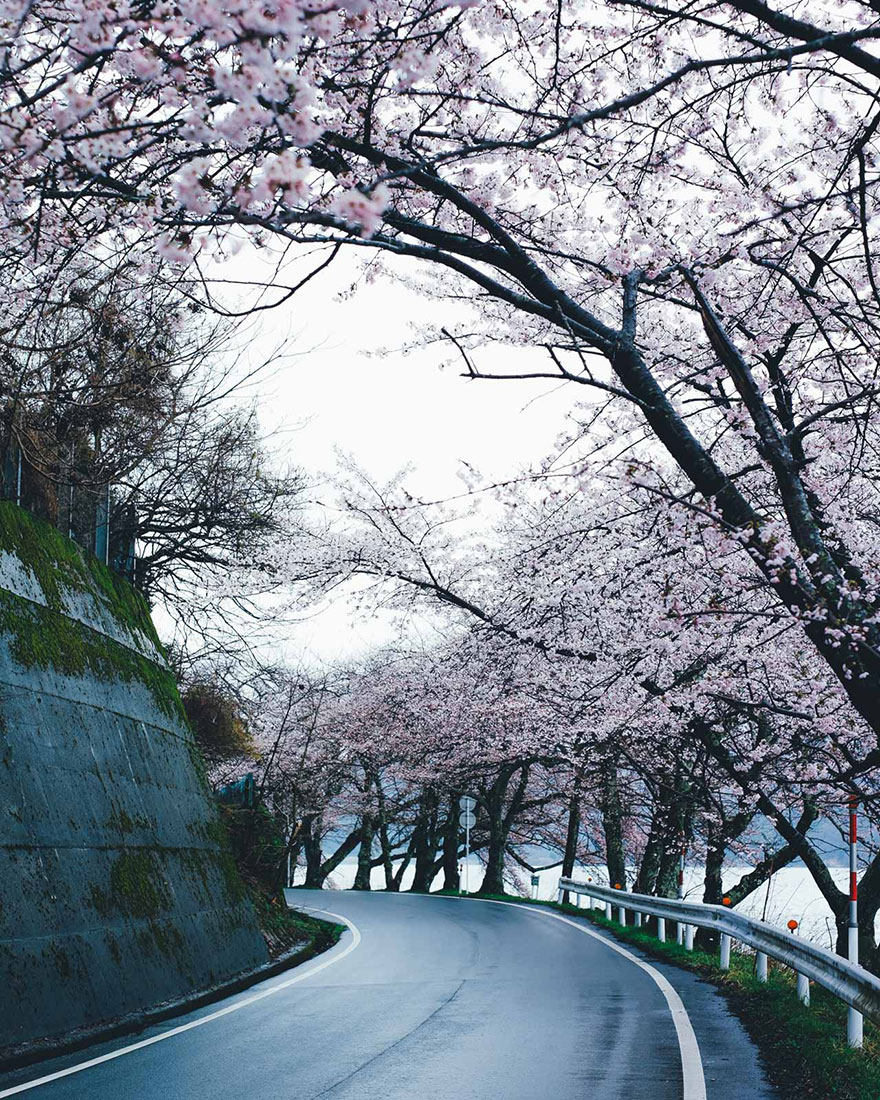 fotografia-vida-cotidiana-japon-takashi-yasui (1)