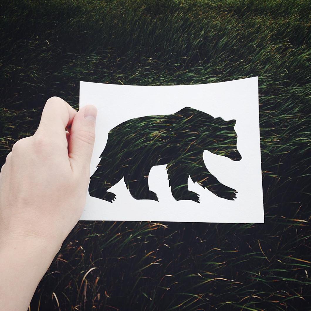 siluetas-animales-paisajes-naturales-nikolai-tolsty (3)