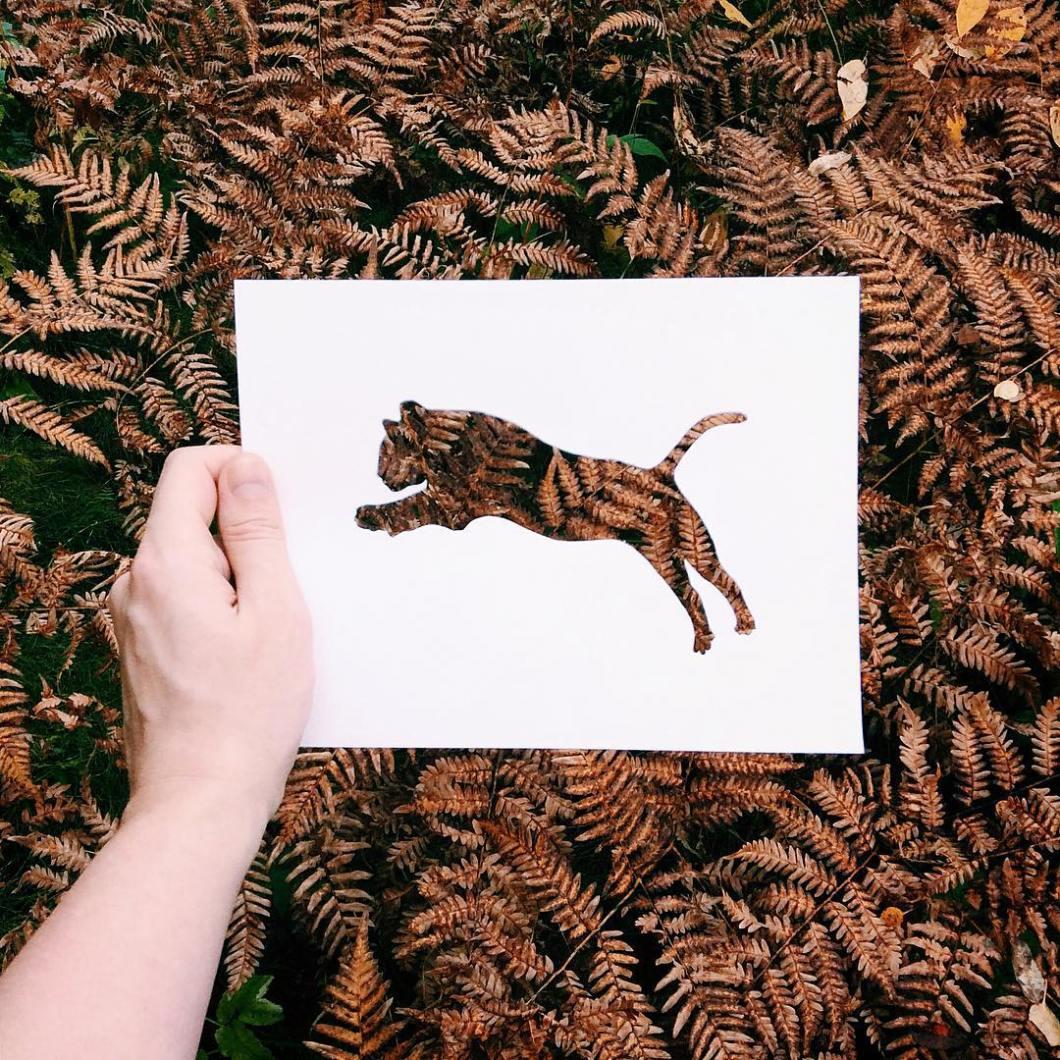 siluetas-animales-paisajes-naturales-nikolai-tolsty (5)
