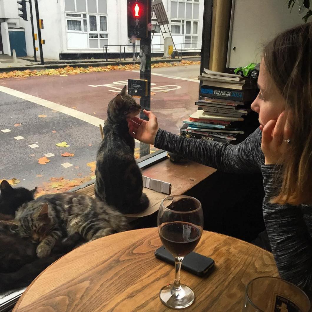 bar-gatos-pub-bag-of-nails-bristol (6)