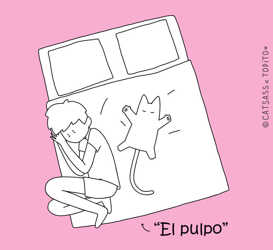 posturas-dormir-gato-catsass-3