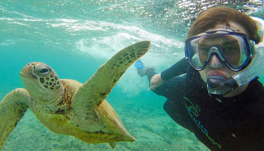 experto-selfies-animales-allan-dixon (8)