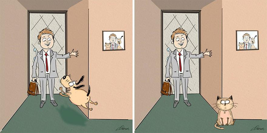 ilustraciones-diferencias-gatos-perros-bird-born (5)