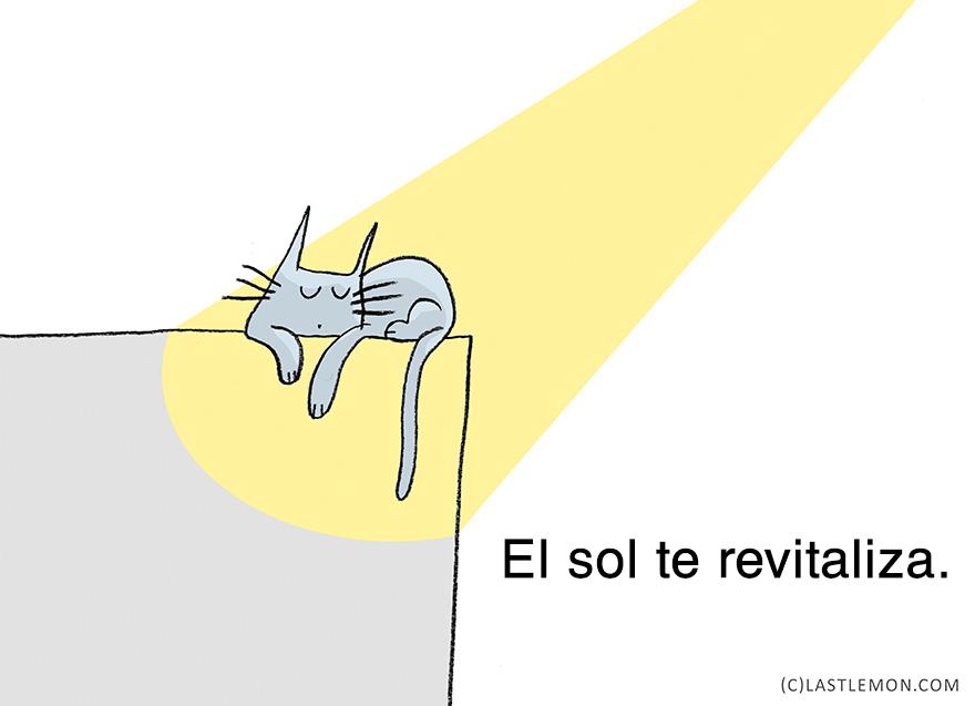 lecciones-vitales-gatos-lastlemon-11