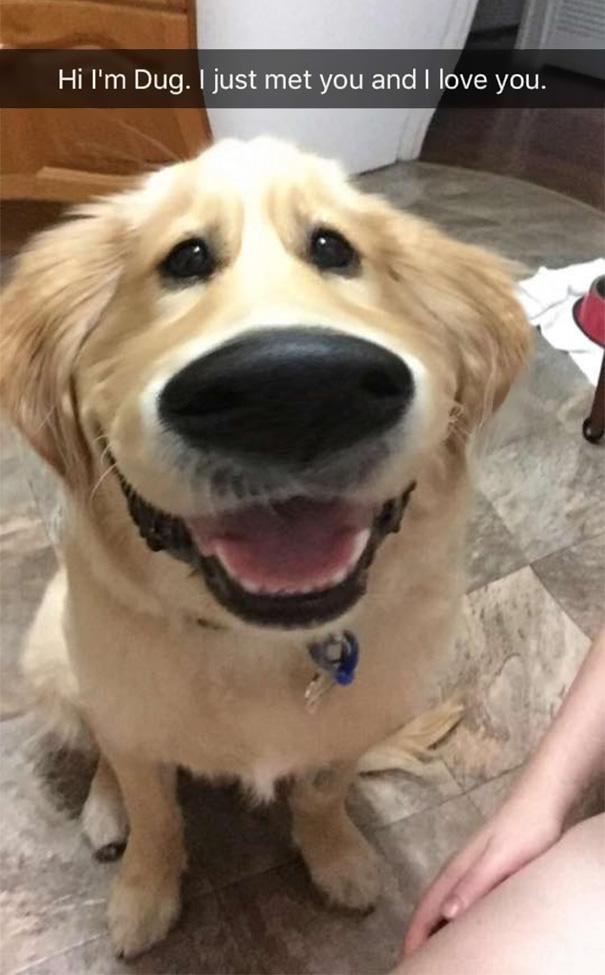 filtro-snapchat-perro-dug-pelicula-up (7)