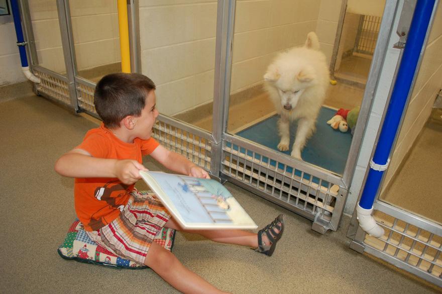 ninos-leyendo-perros-refugio-missouri (2)