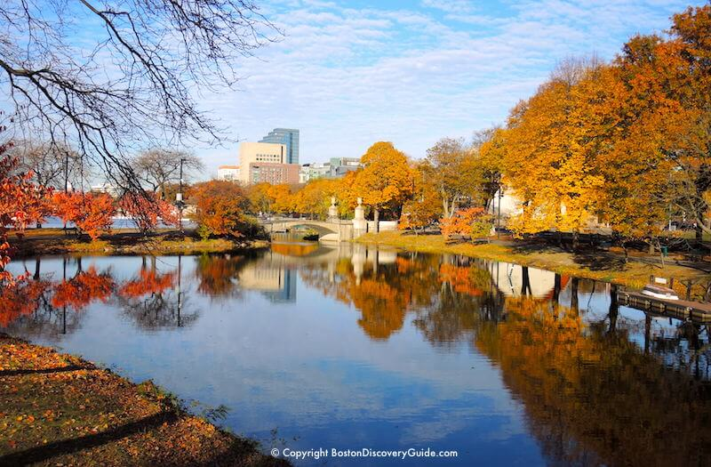 Maine Fall Foliage Wallpaper Boston Fall Foliage Tours 7 Best Sites In The City