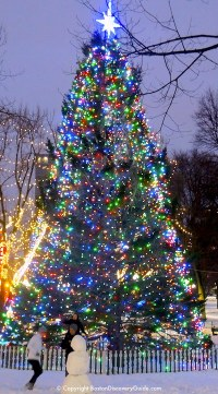 Boston Christmas Tree Lighting Events Schedule 2017 ...