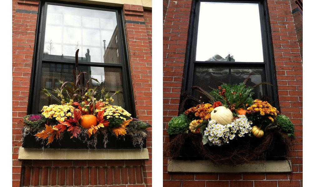 Fall Window Box Arrangement Ideas