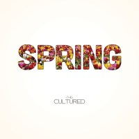 "Overlooked in 2014: The Cultured's ""Spring"""