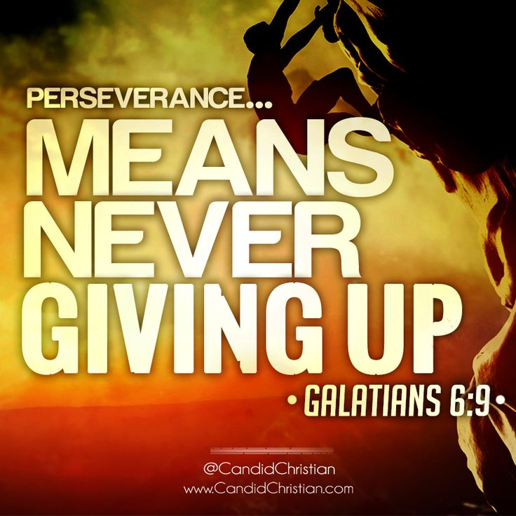 never give up graphic