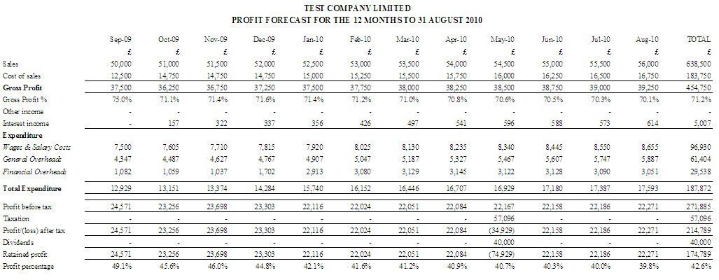 Cash Flow - 12-Month Loan and Hire Purchase Reports Business - profit and loss forecast template