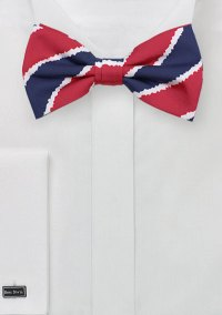Trendy Striped Bow Tie in Printed Cotton