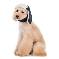 Trapper Dog Hat, Dog Hat, dog Halloween costumes, dog hats