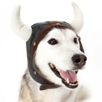 Viking Helmet Dog Hat from BowWowsBest.com, Dog caps, hats