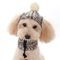 Dog Sweater Hat, dog hats, dog sweaters, dog winter