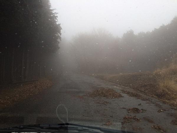 濃霧の猟場