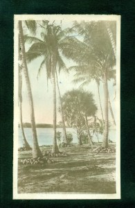 Looking west from Manalapan to Hypoluxo Island. Circa 1912-1917.