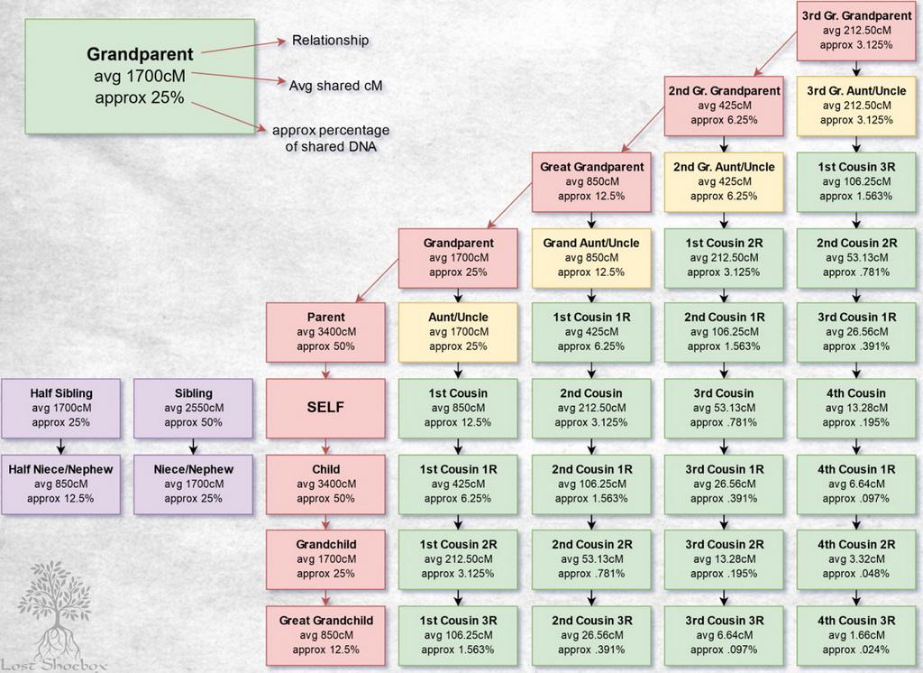cm to in chart - Denmarimpulsar
