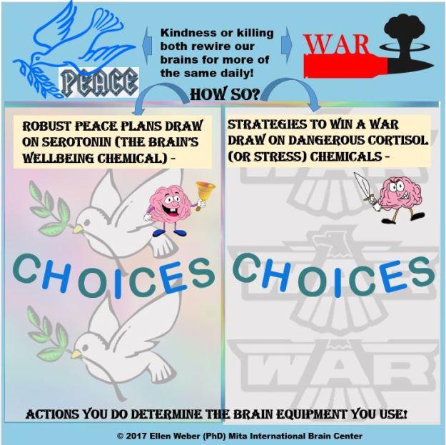 War or Peace - SERO or CORT