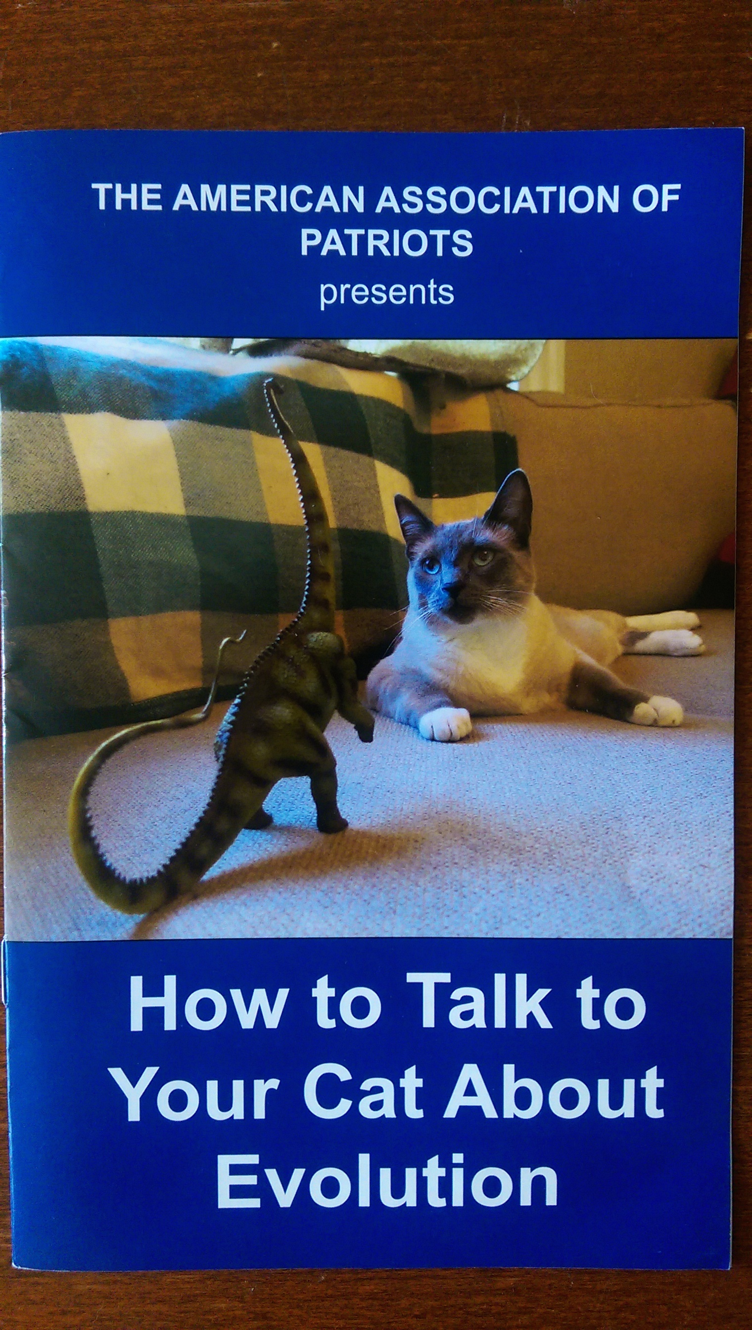 Your cat to talk about gun safety