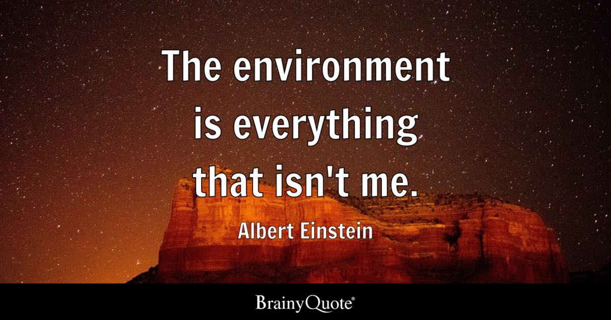 Albert Einstein The Environment Is Everything That Isn39t Me