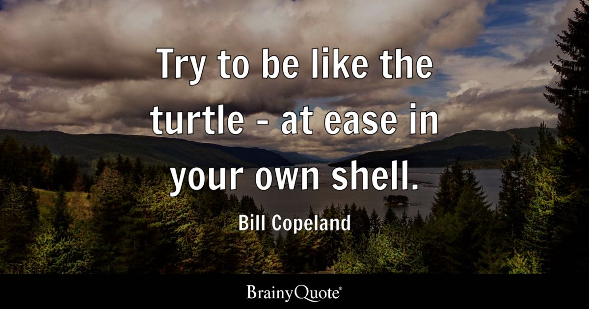 Funny Brainy Quotes Wallpaper Try To Be Like The Turtle At Ease In Your Own Shell
