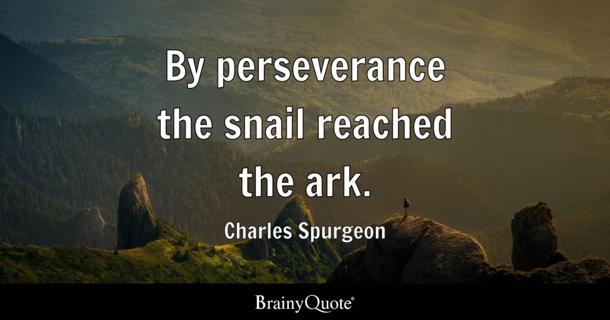 Iphone Sayings Wallpaper By Perseverance The Snail Reached The Ark Charles