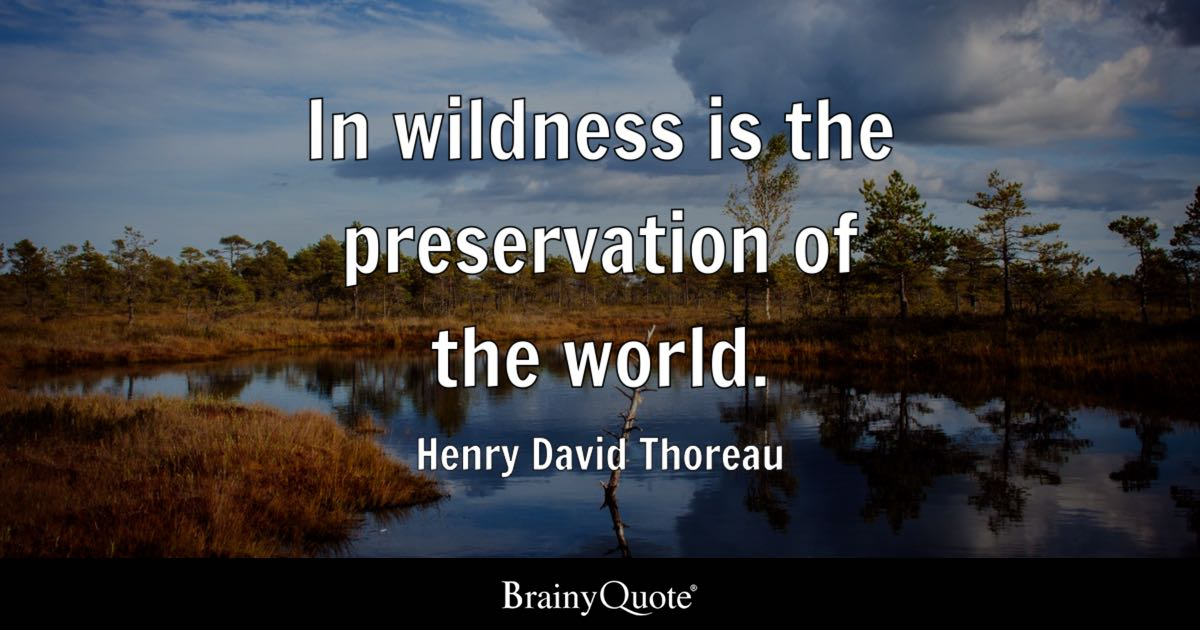 Happiness Quotes Wallpaper Iphone In Wildness Is The Preservation Of The World Henry