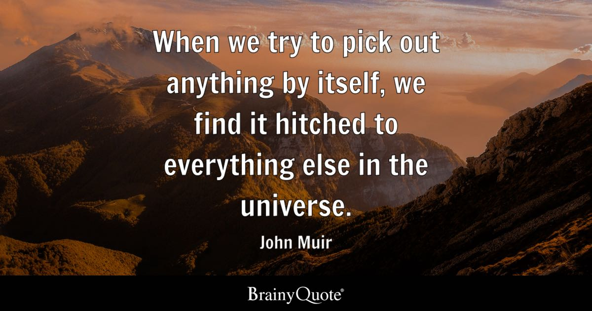 Mother Quote Wallpaper When We Try To Pick Out Anything By Itself We Find It