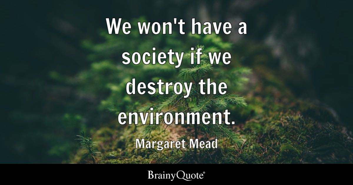 Whatever Quotes Wallpaper We Won T Have A Society If We Destroy The Environment