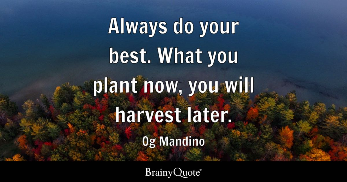 Why Do We Fall Wallpaper Always Do Your Best What You Plant Now You Will Harvest