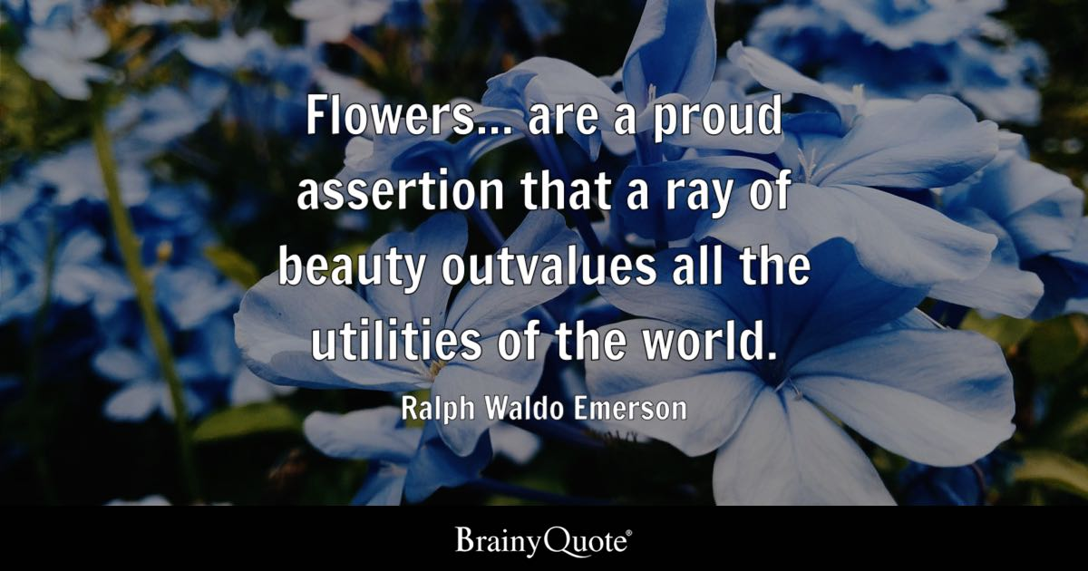 The Yellow Wallpaper Meaningful Quotes Flowers Are A Proud Assertion That A Ray Of Beauty